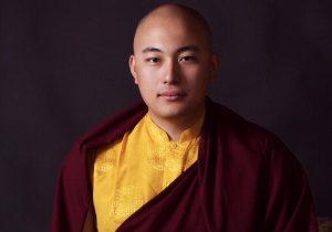 Grupo de estudos online com Kalu Rinpoche